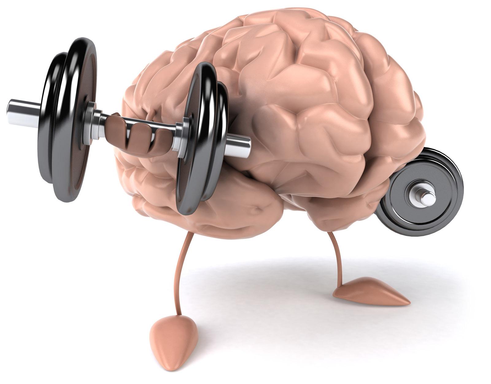 kapasitas otak