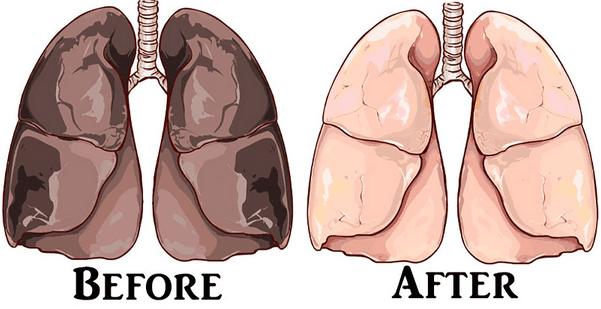 tips membersihkan paru paru